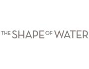Форма воды